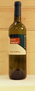 LacusMagnus_wit